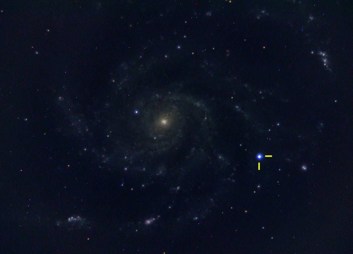 M101 Supernova