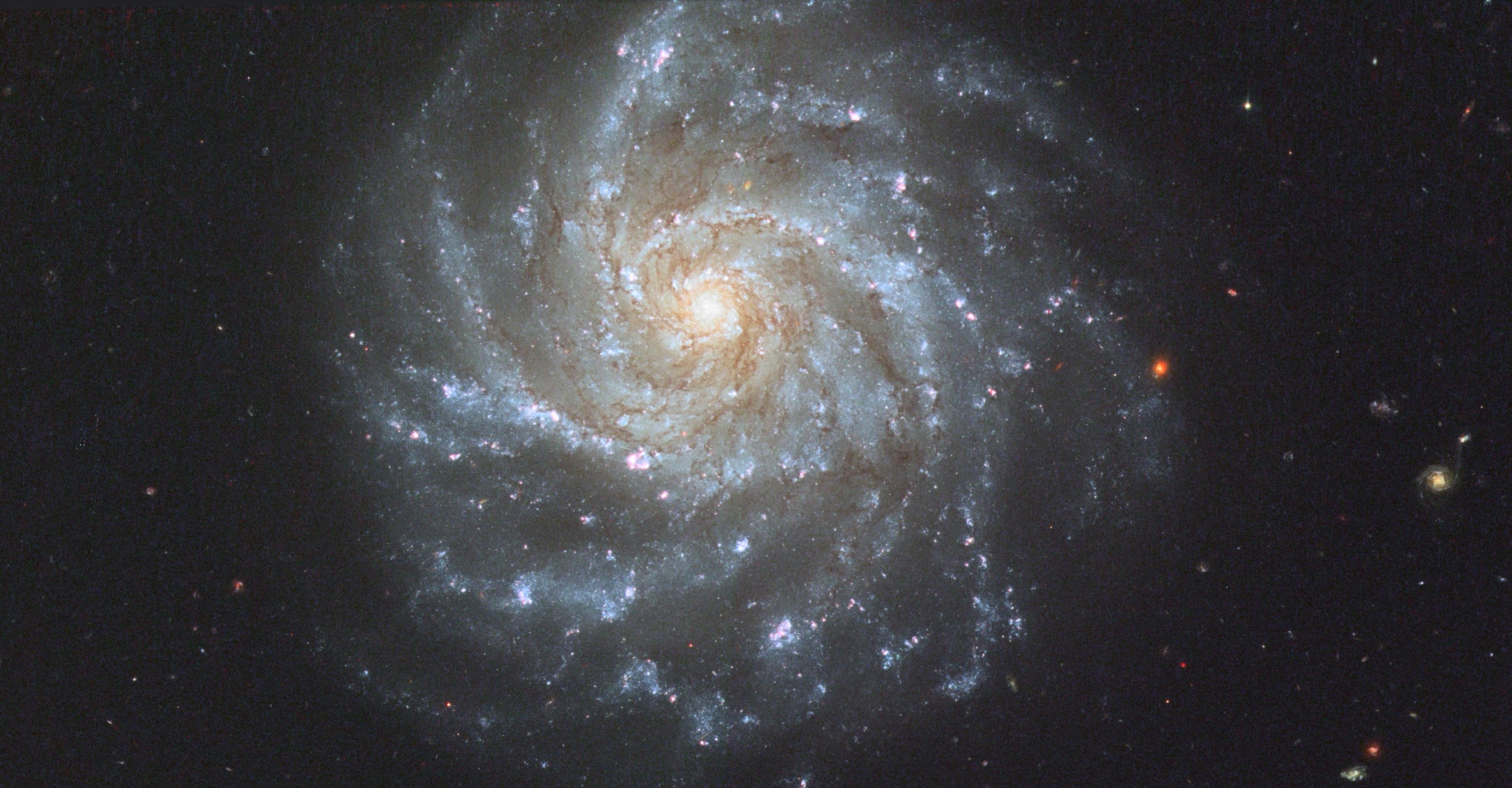 NGC1376 HST