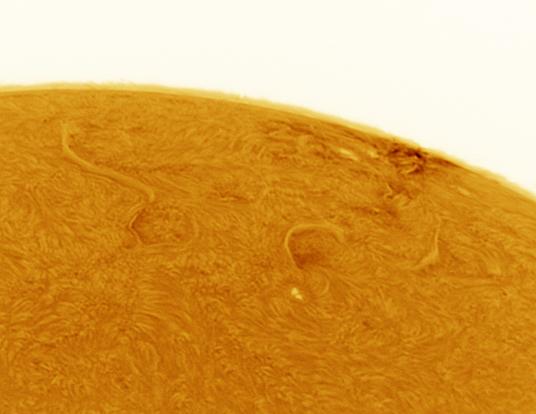 Sunspot 1519 inverted image