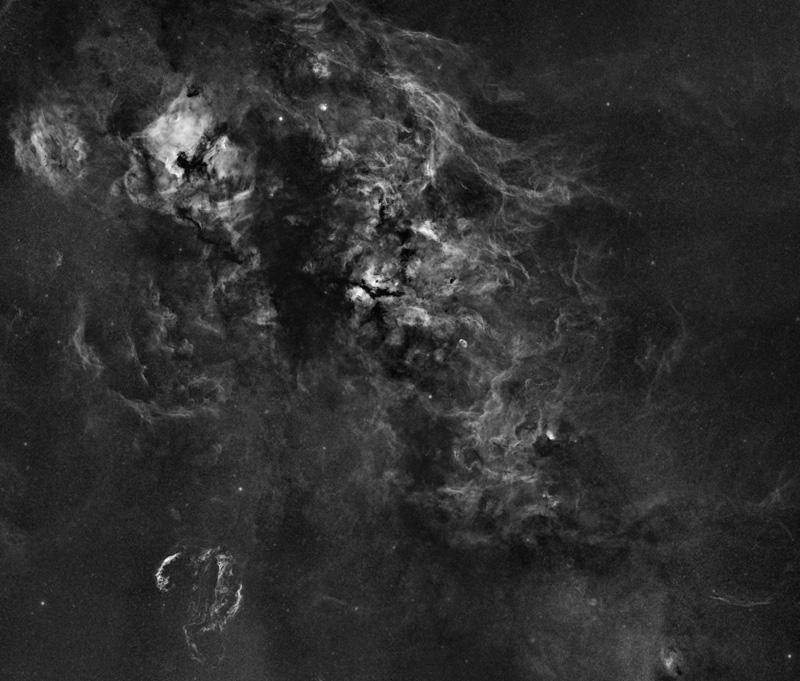 Nebulosity in the Cygnus constellation
