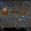 Lynds Dark Nebula 1251