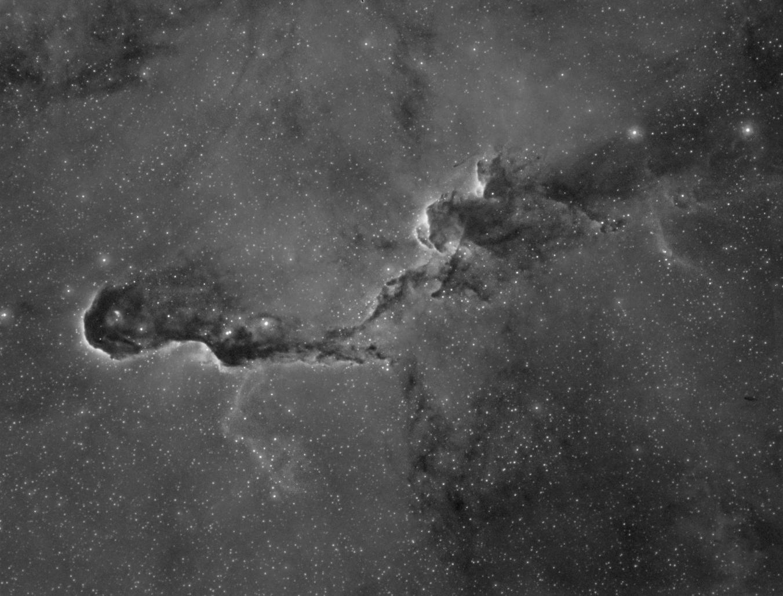 IC1396/vdB142 Elephant Trunk Nebula