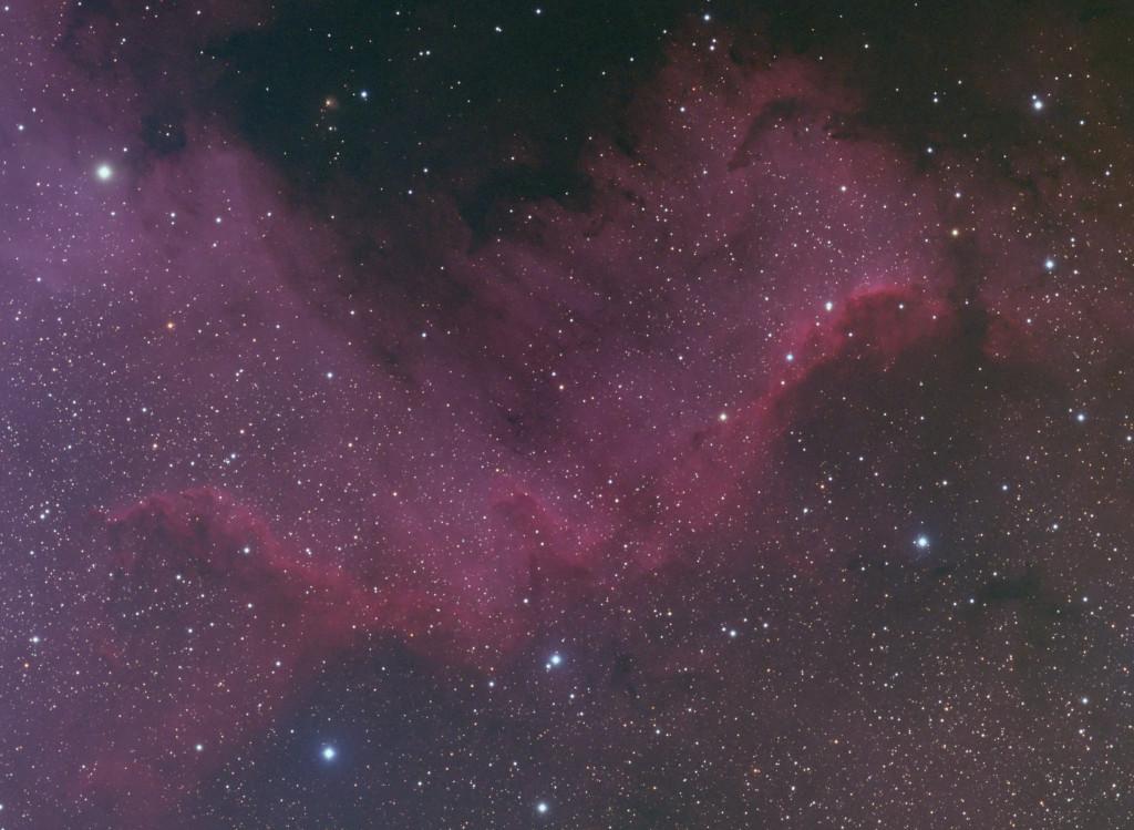 Cygnus_rgb_large-2