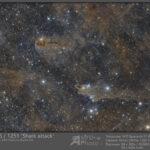 LDN1235 / 1251 Shark nebula and surroundings (zoomable)